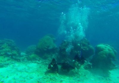 #12 Scuba Dive the Great Barrier Reef