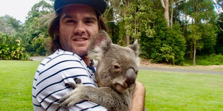 #66 Hug a Koala Bear