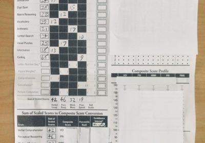 #93 Take an IQ Test